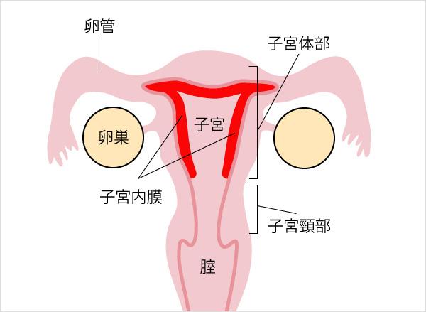 子宮 体 が ん 症状