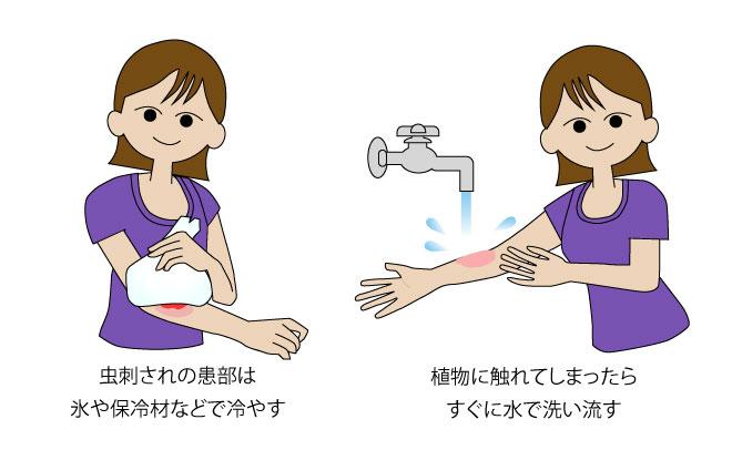 症状が出たときの応急処置方法