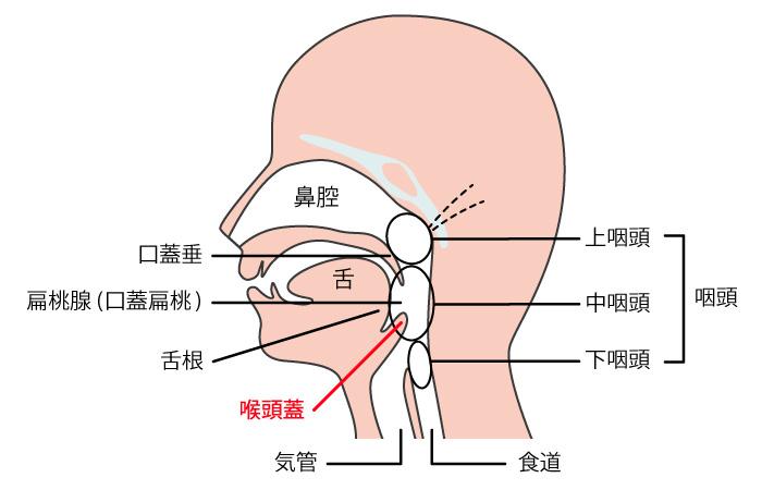 コロナ 炎 扁桃 腺