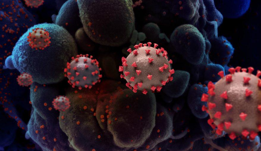 感染拡大の今だから知りたい! ①新型コロナのワクチン開発、どこまで進んだ?