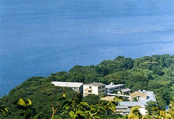 児童養護施設 静岡県川奈臨海学園