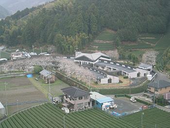 障害者支援施設 静岡市桜の園