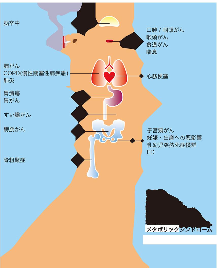 方法 タバコ 辞める たばこをやめるには。その方法とタバコの意外なデメリットとは。