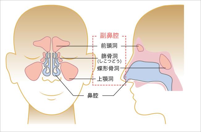 鼻腔 炎 コロナ 副
