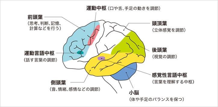 脳 梗塞 後遺症